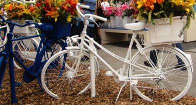 Bike in Holland