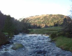 Ireland county Wicklow