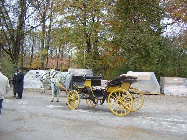 Horse riding in Englischen Garten Munich