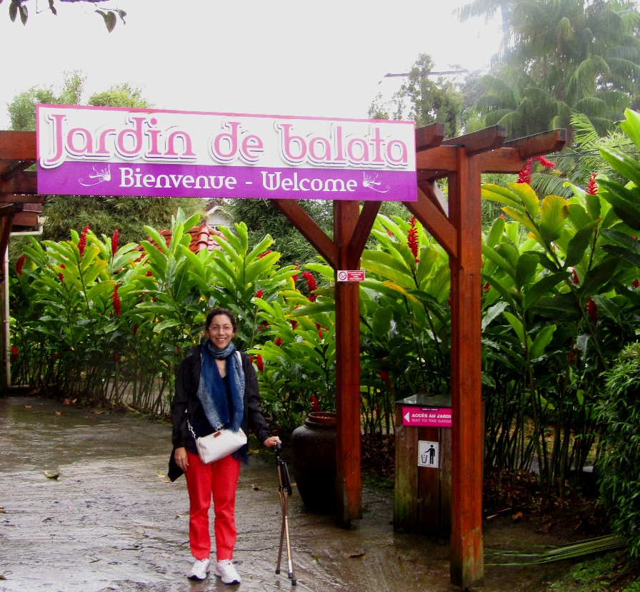 Accessible travel in Martinique Jardin de Balata