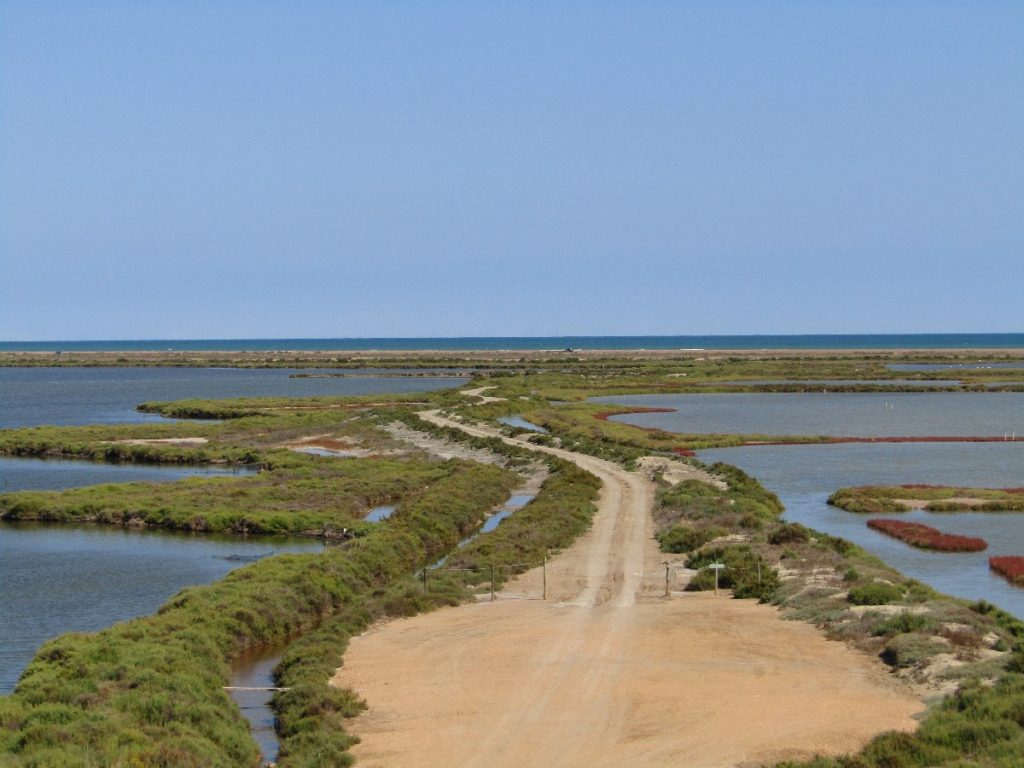 Ebro Delta, a rich land for Catalonia