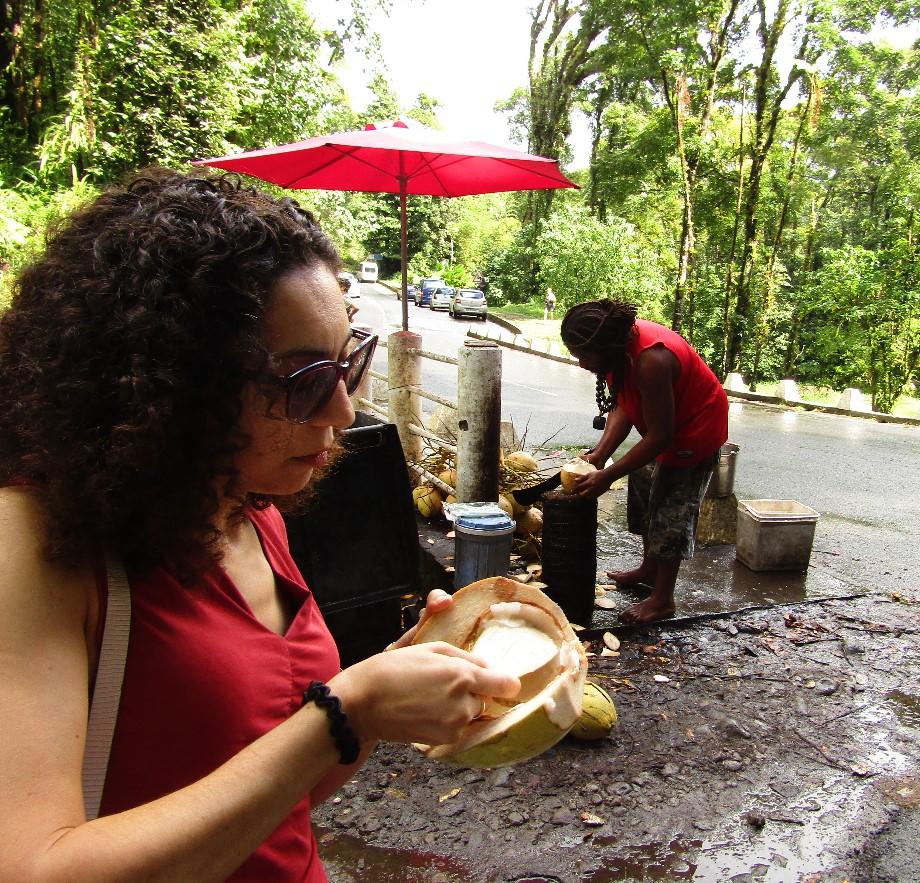 Eat freshly cut coconuts / Freshly cut coconuts in Martinique