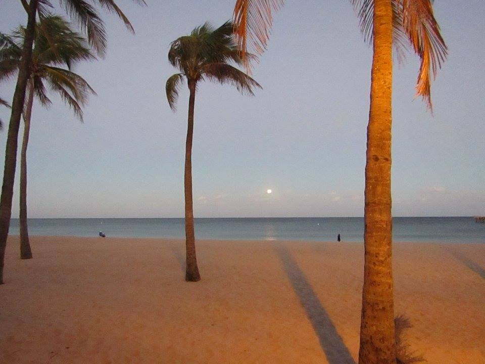 Moonlight in Fort Lauderdale, USA